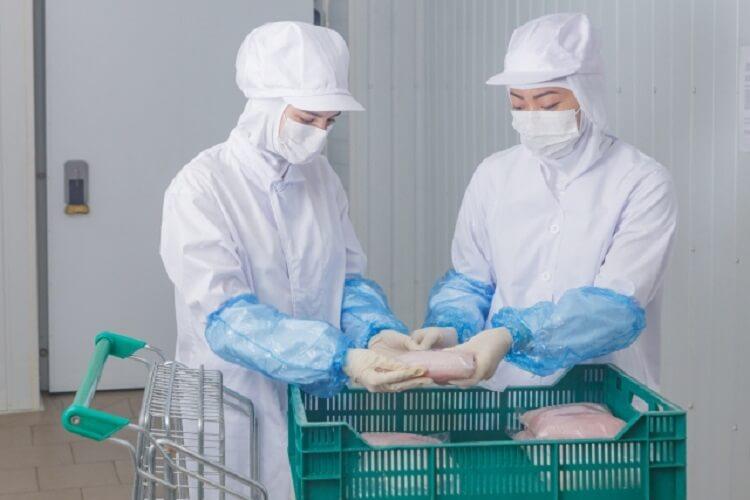 食品製造・加工のお仕事とは
