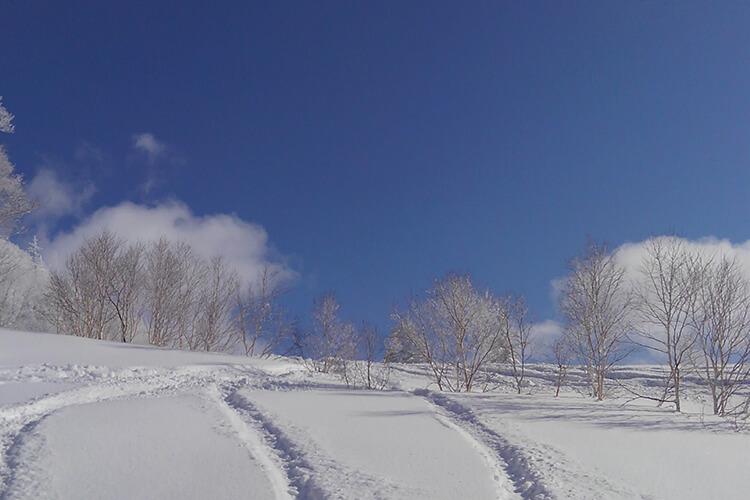 北海道の冬景色