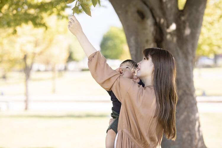 主婦の転職タイミング、育児休業